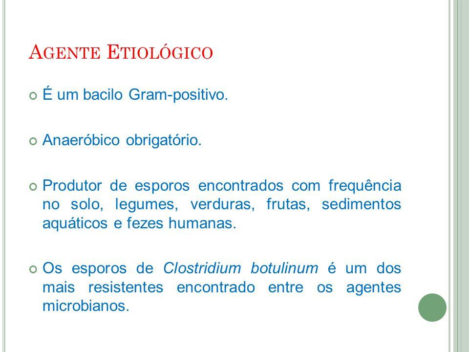 Agente Etiológico É um bacilo Gram-positivo. Anaeróbico obrigatório.