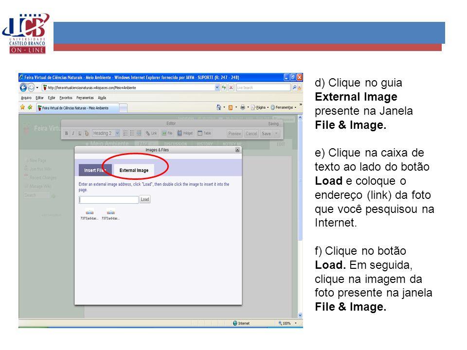 d) Clique no guia External Image presente na Janela File & Image.