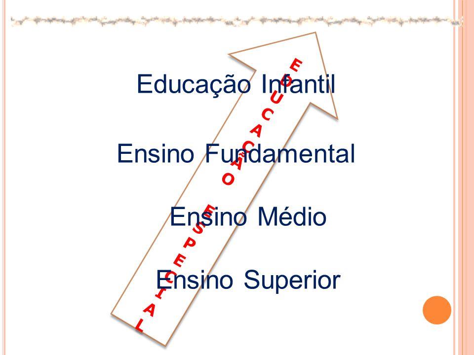 Educação Infantil Ensino Fundamental Ensino Médio Ensino Superior E D