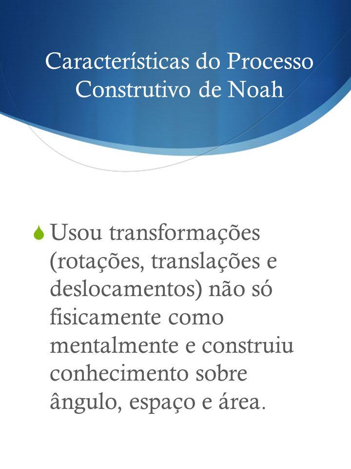 Características do Processo Construtivo de Noah