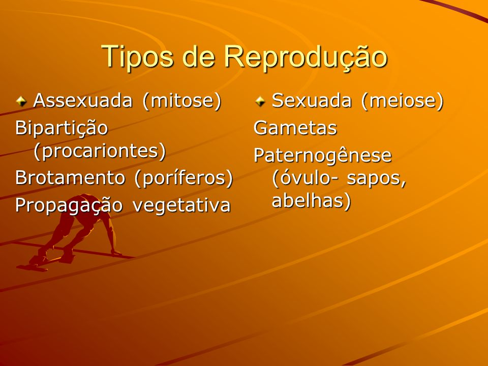 Tipos de Reprodução Assexuada (mitose) Bipartição (procariontes)