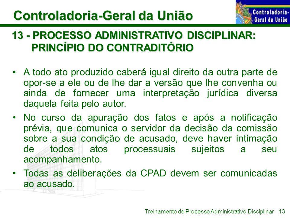 13 - PROCESSO ADMINISTRATIVO DISCIPLINAR: PRINCÍPIO DO CONTRADITÓRIO