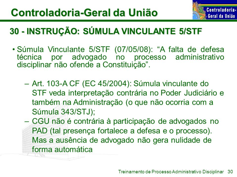 30 - INSTRUÇÃO: SÚMULA VINCULANTE 5/STF