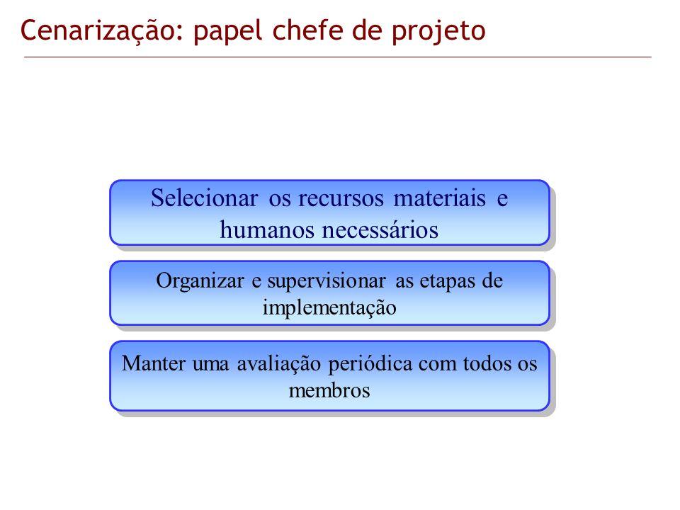 Cenarização: papel chefe de projeto