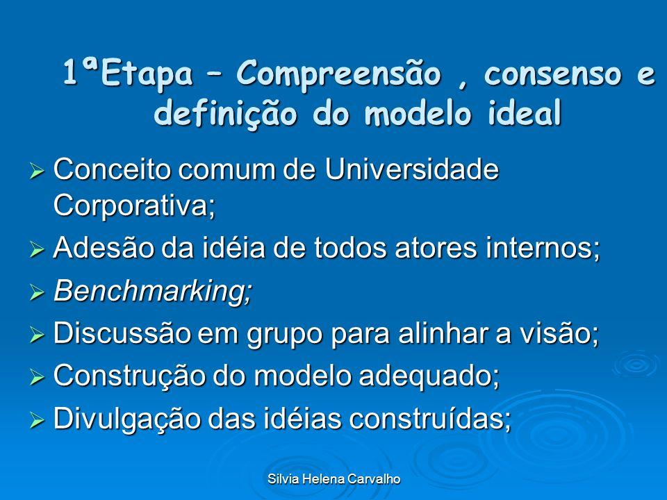 1ªEtapa – Compreensão , consenso e definição do modelo ideal