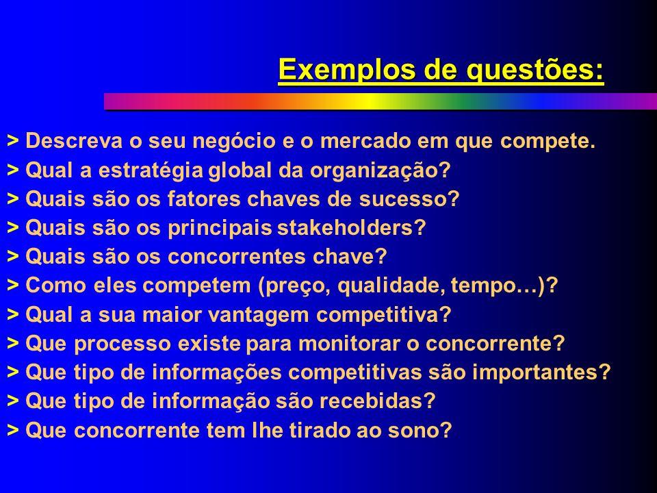 Exemplos de questões: > Descreva o seu negócio e o mercado em que compete. > Qual a estratégia global da organização