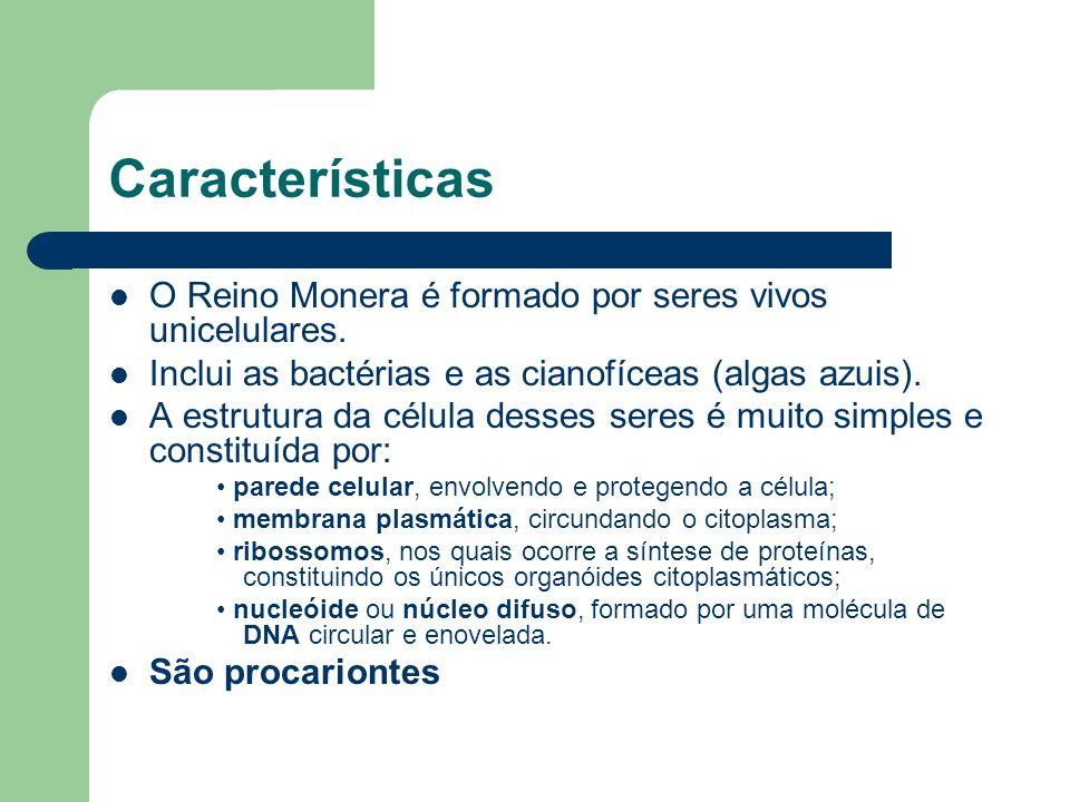 Características O Reino Monera é formado por seres vivos unicelulares.