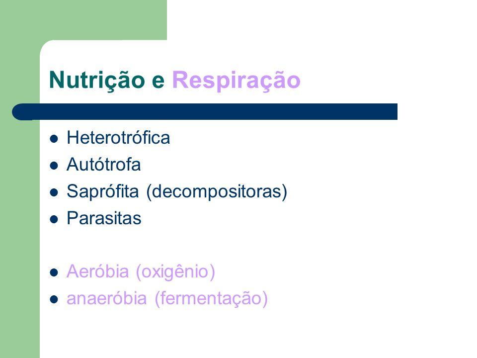 Nutrição e Respiração Heterotrófica Autótrofa
