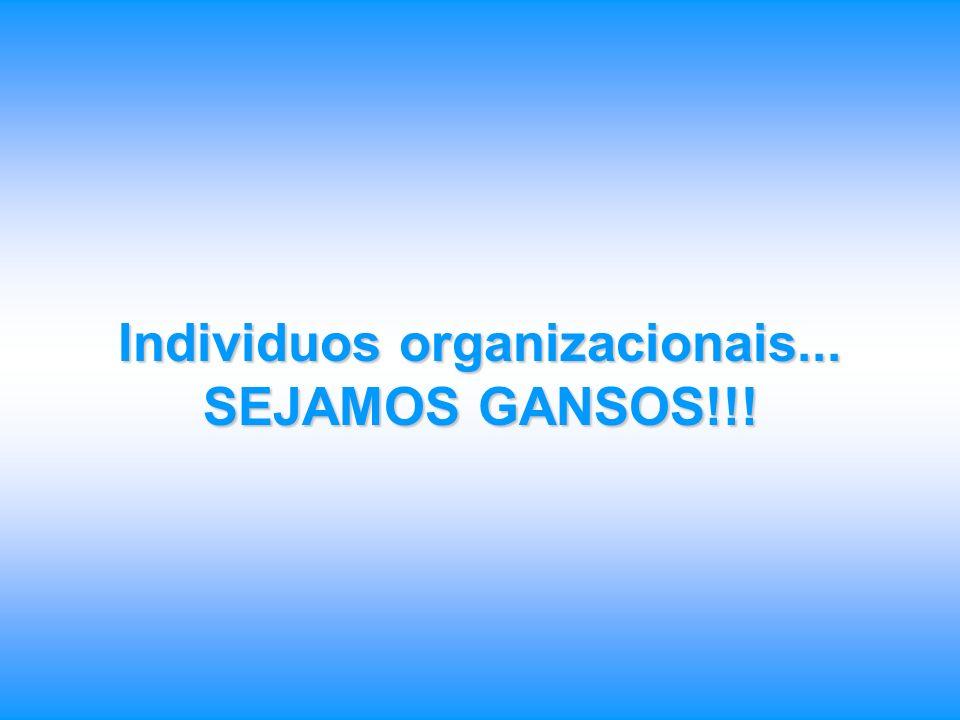 Individuos organizacionais...