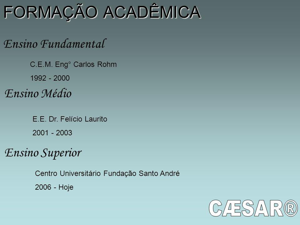 FORMAÇÃO ACADÊMICA Ensino Fundamental Ensino Médio Ensino Superior