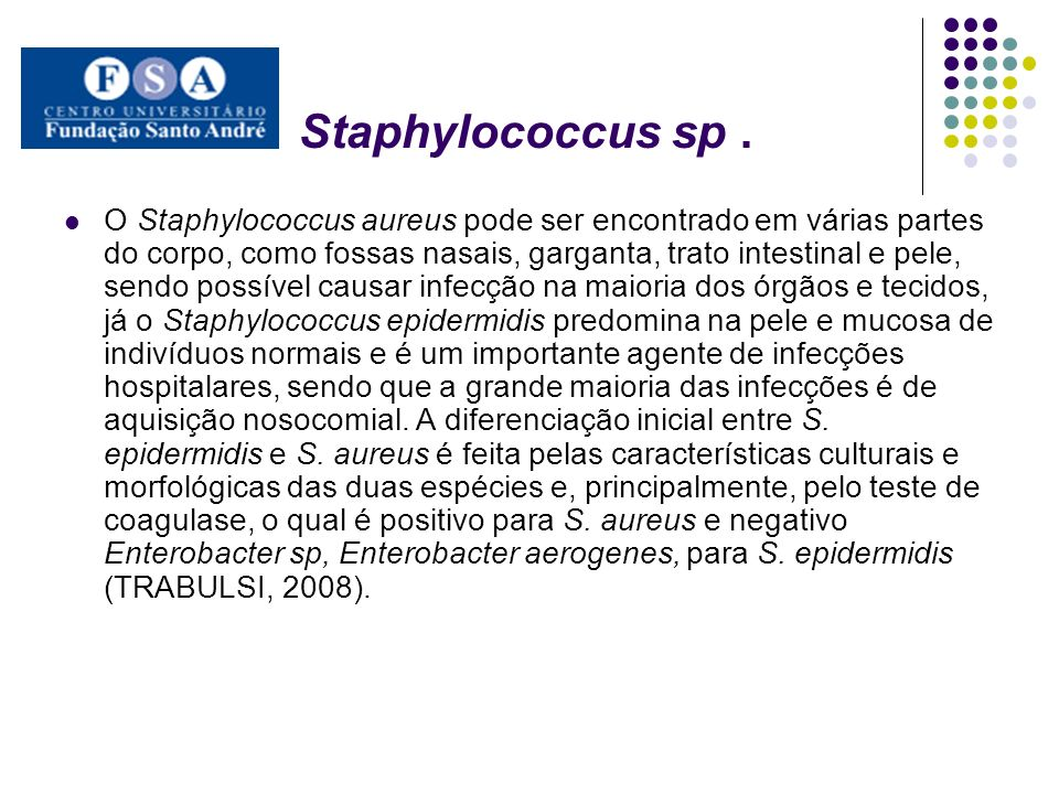 Staphylococcus sp .