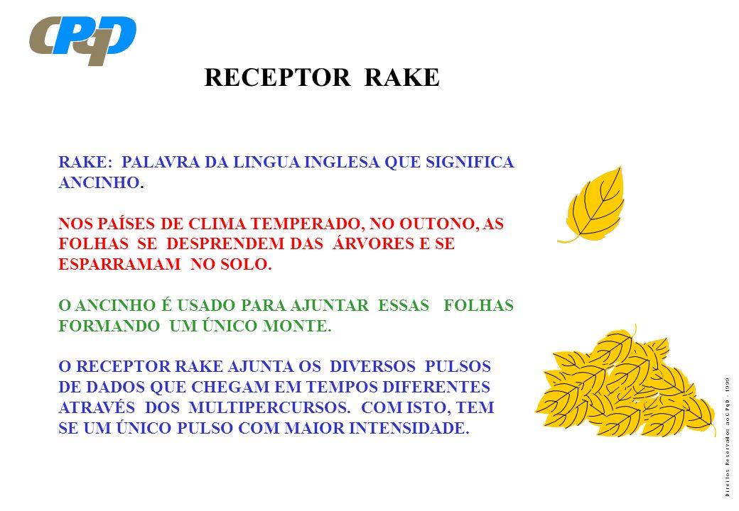 RECEPTOR RAKE RAKE: PALAVRA DA LINGUA INGLESA QUE SIGNIFICA ANCINHO.