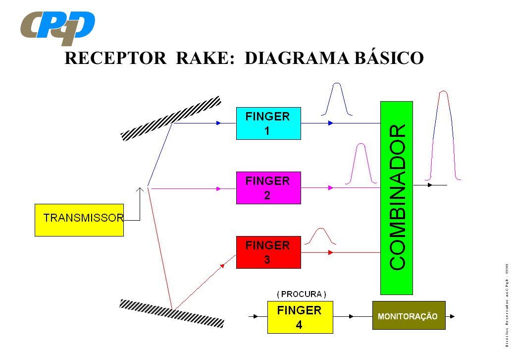 RECEPTOR RAKE: DIAGRAMA BÁSICO