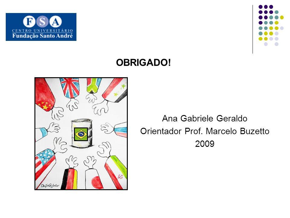 Orientador Prof. Marcelo Buzetto