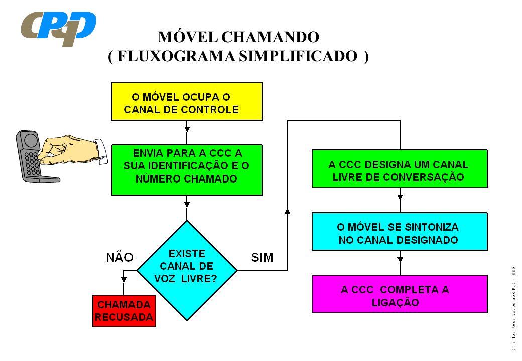 ( FLUXOGRAMA SIMPLIFICADO )