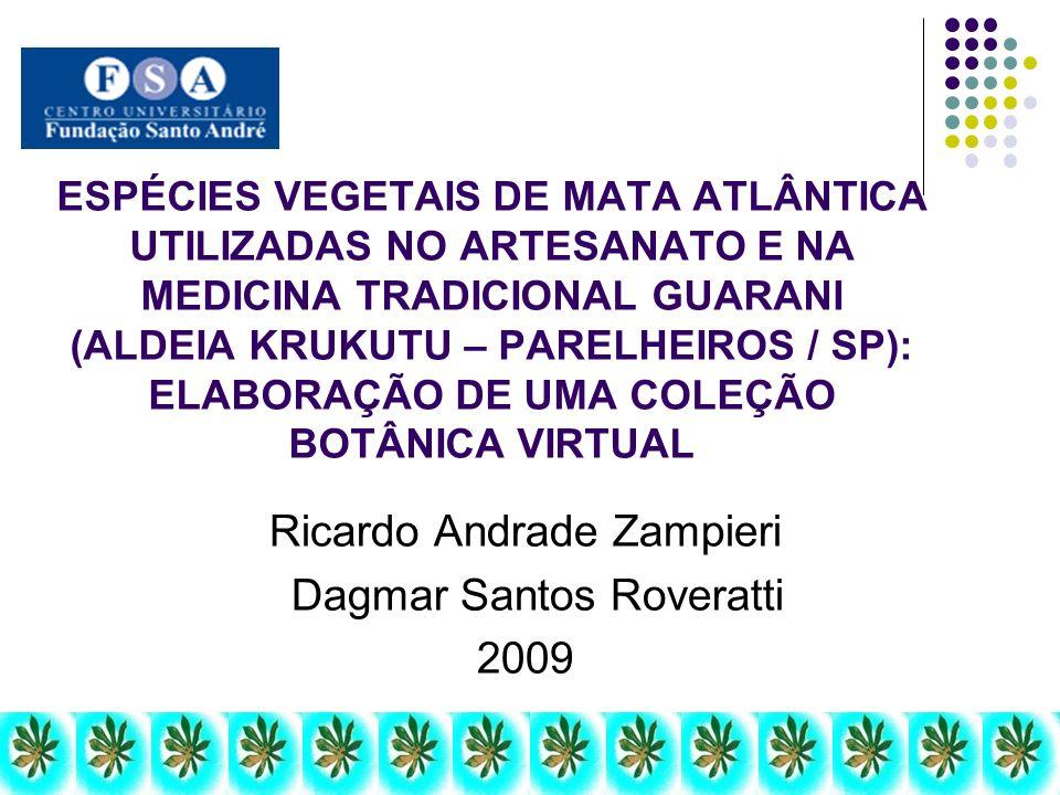 Ricardo Andrade Zampieri Dagmar Santos Roveratti 2009