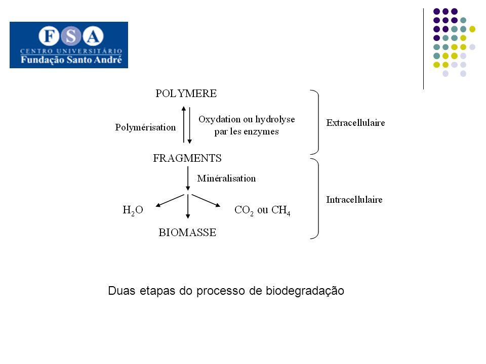 Duas etapas do processo de biodegradação