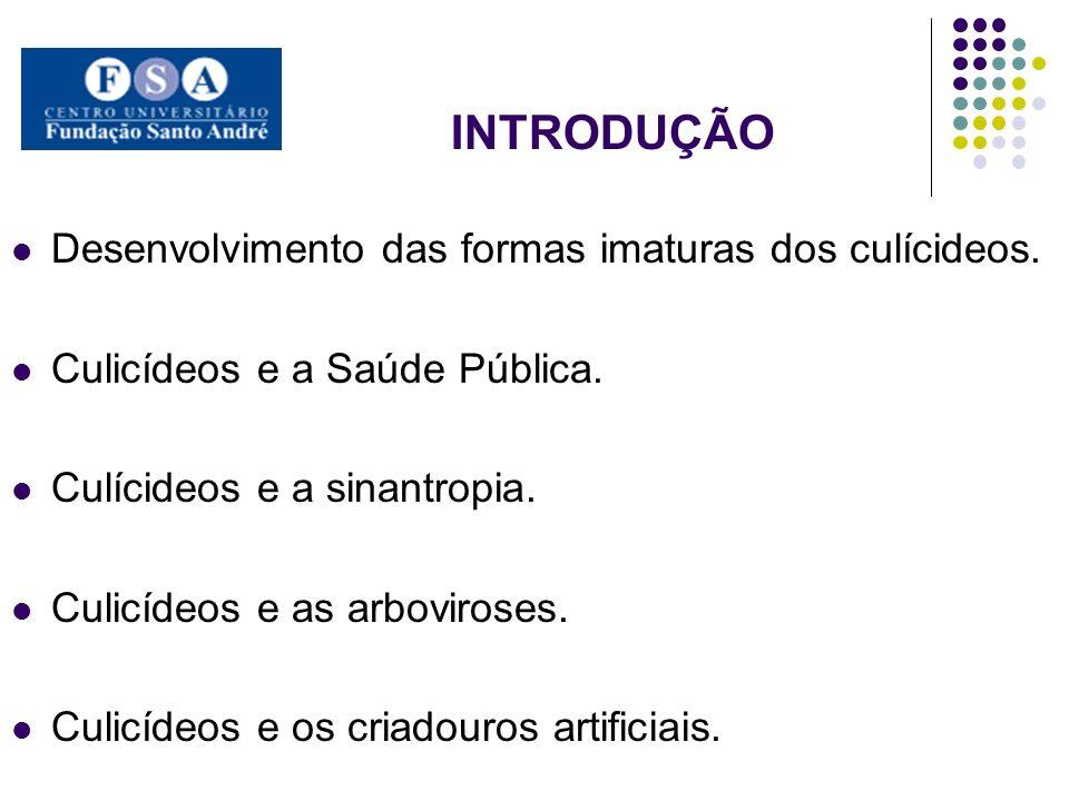 INTRODUÇÃO Desenvolvimento das formas imaturas dos culícideos.