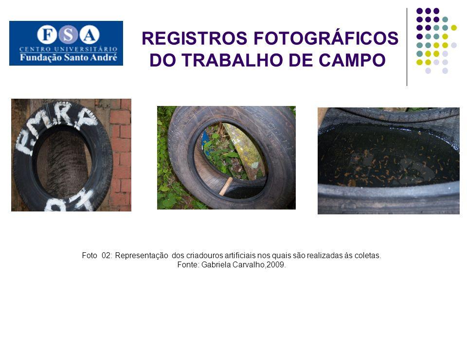 REGISTROS FOTOGRÁFICOS DO TRABALHO DE CAMPO