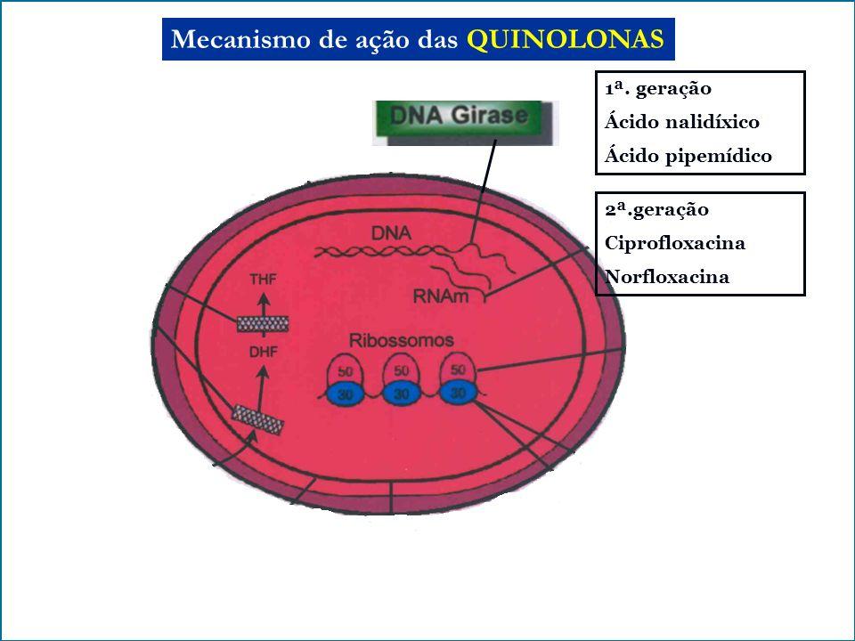 Mecanismo de ação das QUINOLONAS