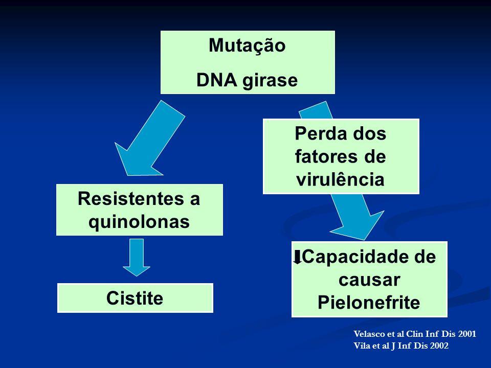 Perda dos fatores de virulência Resistentes a quinolonas
