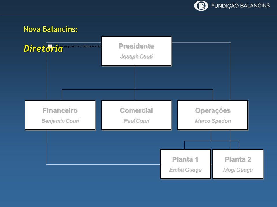 Diretoria Nova Balancins: Presidente Financeiro Comercial Operações