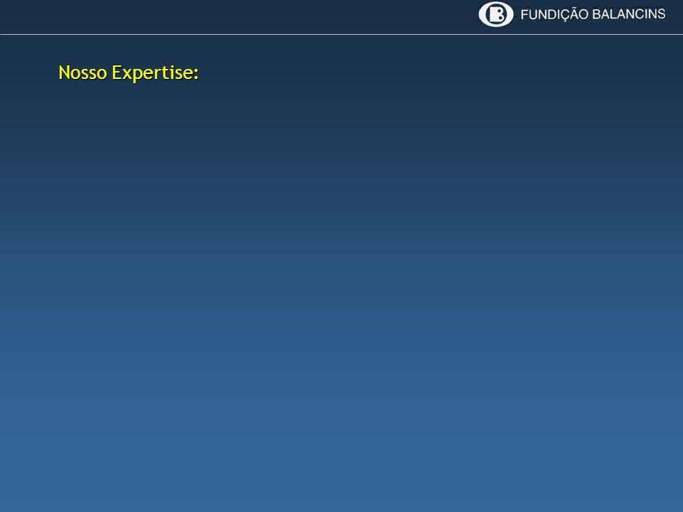 Nosso Expertise: