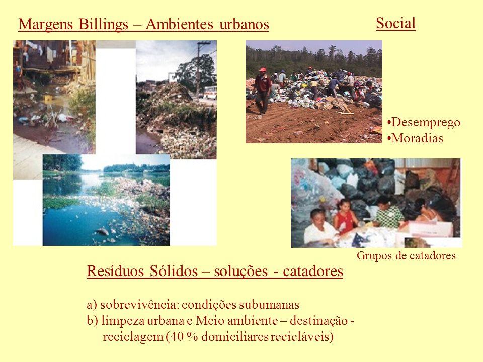 Margens Billings – Ambientes urbanos