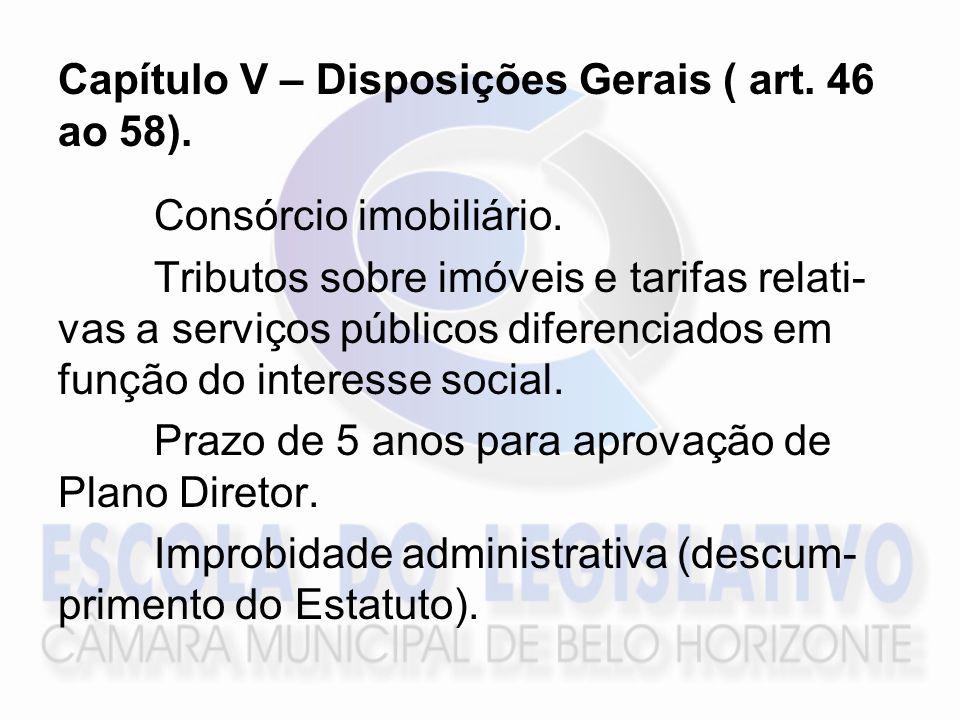 Capítulo V – Disposições Gerais ( art. 46 ao 58).