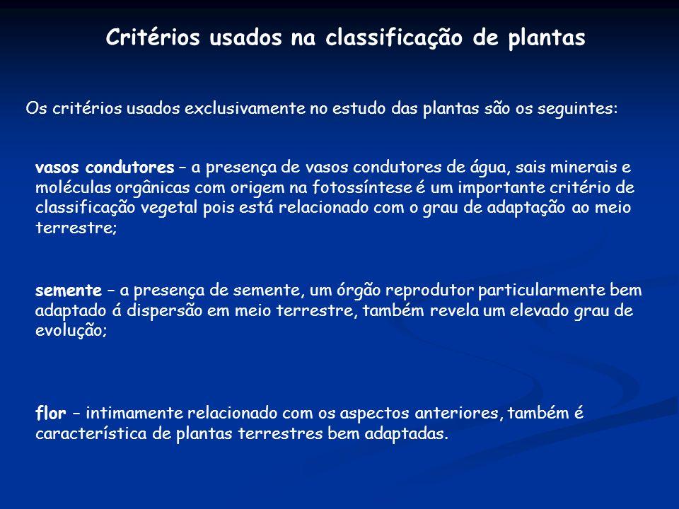 Critérios usados na classificação de plantas