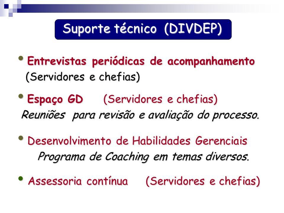 Suporte técnico (DIVDEP)
