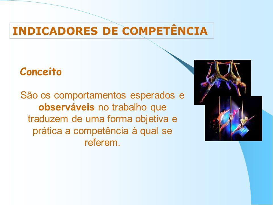INDICADORES DE COMPETÊNCIA