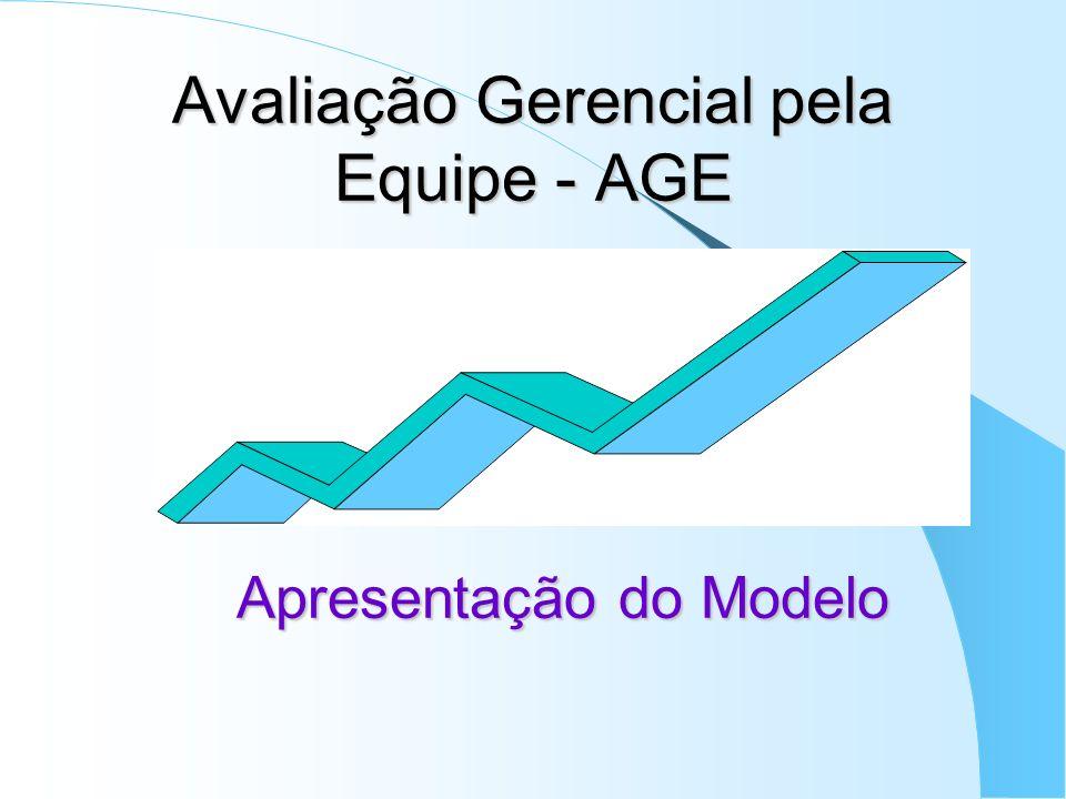 Avaliação Gerencial pela Equipe - AGE