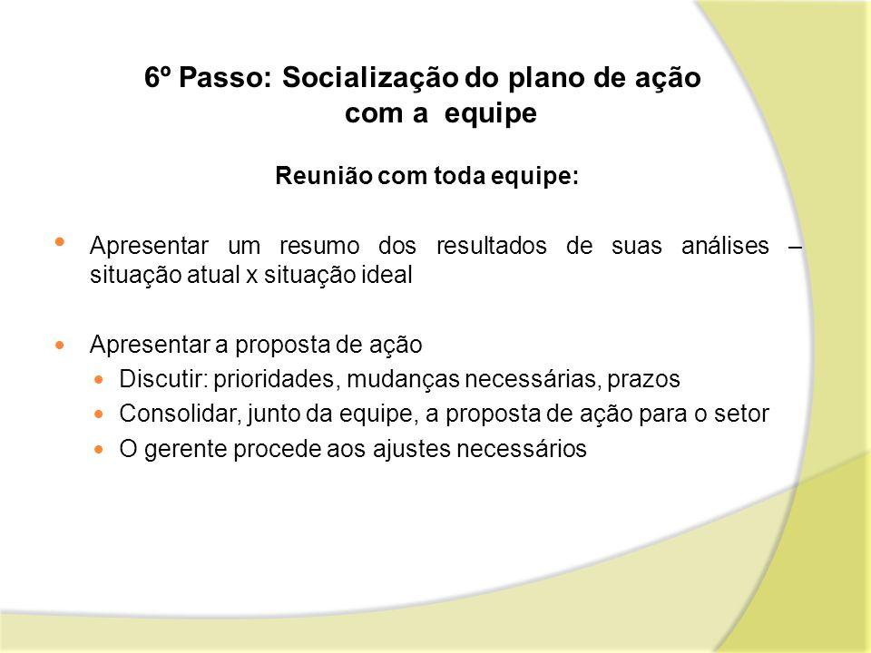 6º Passo: Socialização do plano de ação com a equipe
