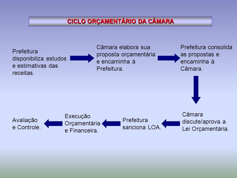 CICLO ORÇAMENTÁRIO DA CÂMARA