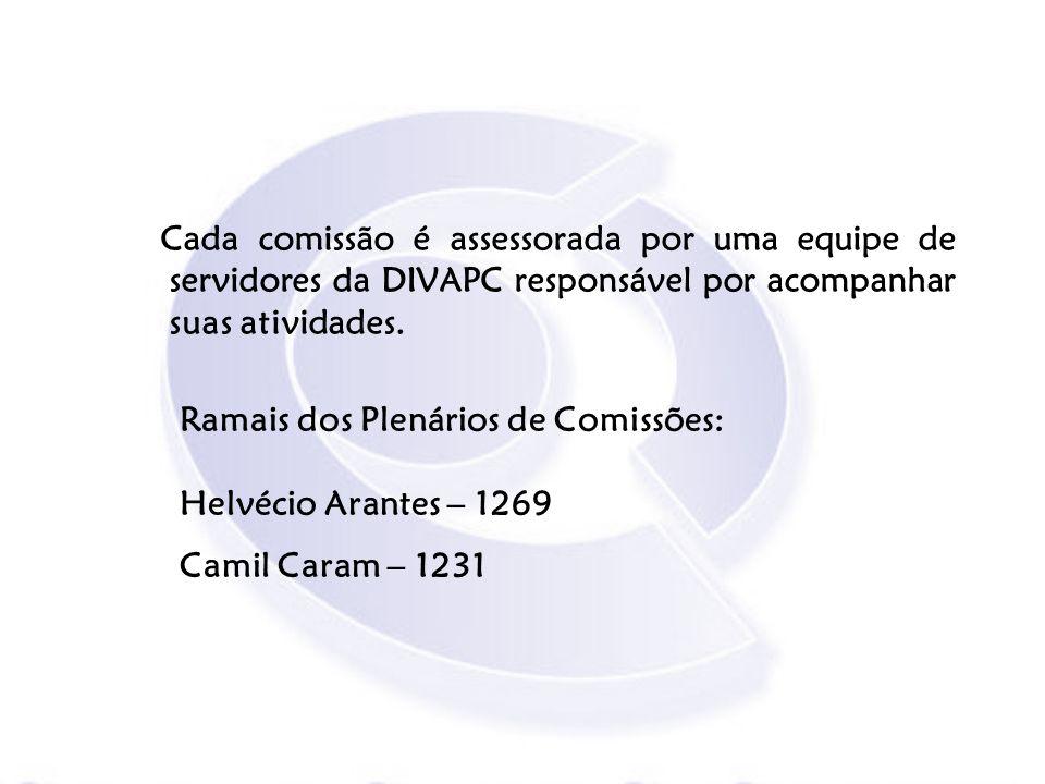 Cada comissão é assessorada por uma equipe de servidores da DIVAPC responsável por acompanhar suas atividades.