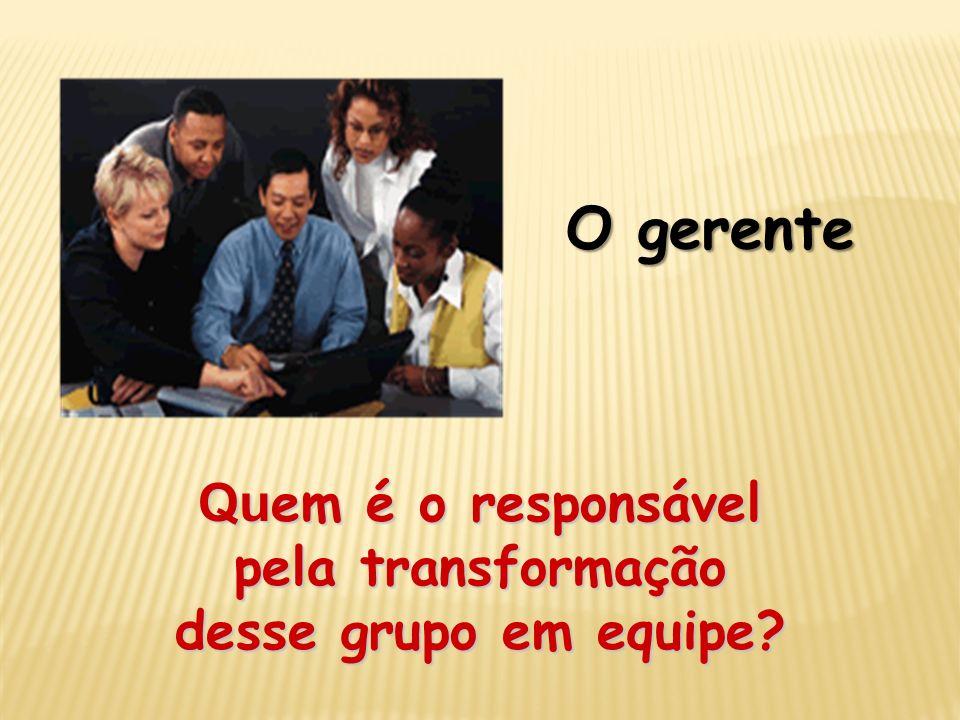 Quem é o responsável pela transformação desse grupo em equipe