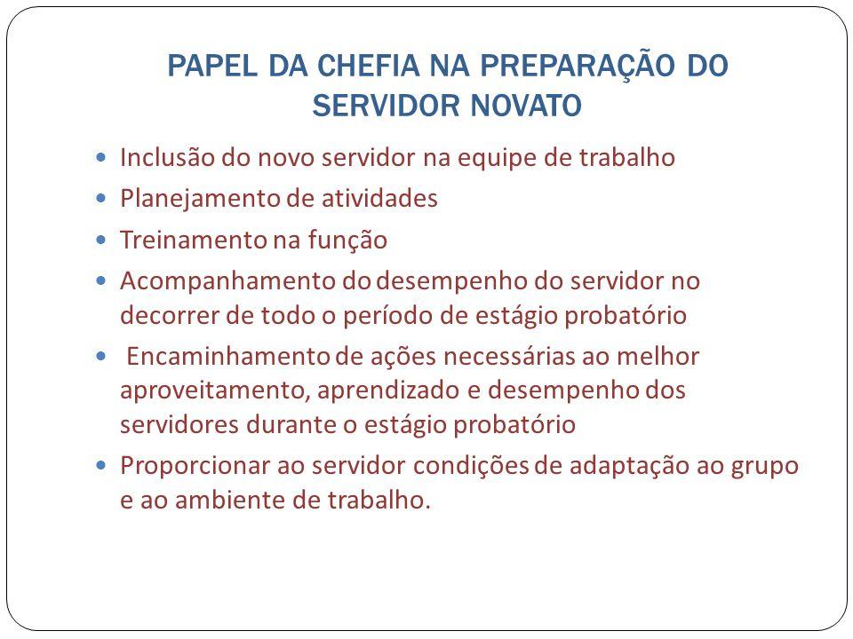 PAPEL DA CHEFIA NA PREPARAÇÃO DO SERVIDOR NOVATO