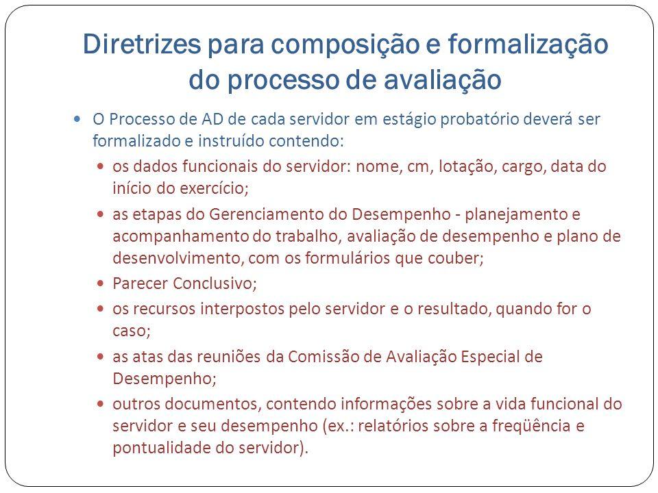 Diretrizes para composição e formalização do processo de avaliação