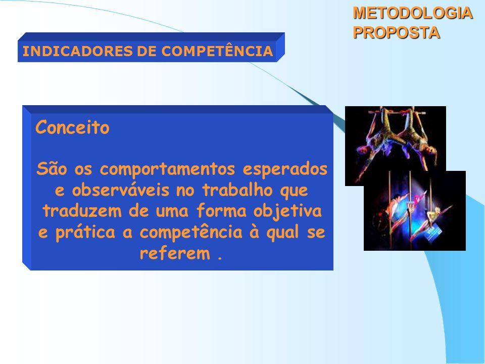 METODOLOGIA PROPOSTA INDICADORES DE COMPETÊNCIA. Conceito.
