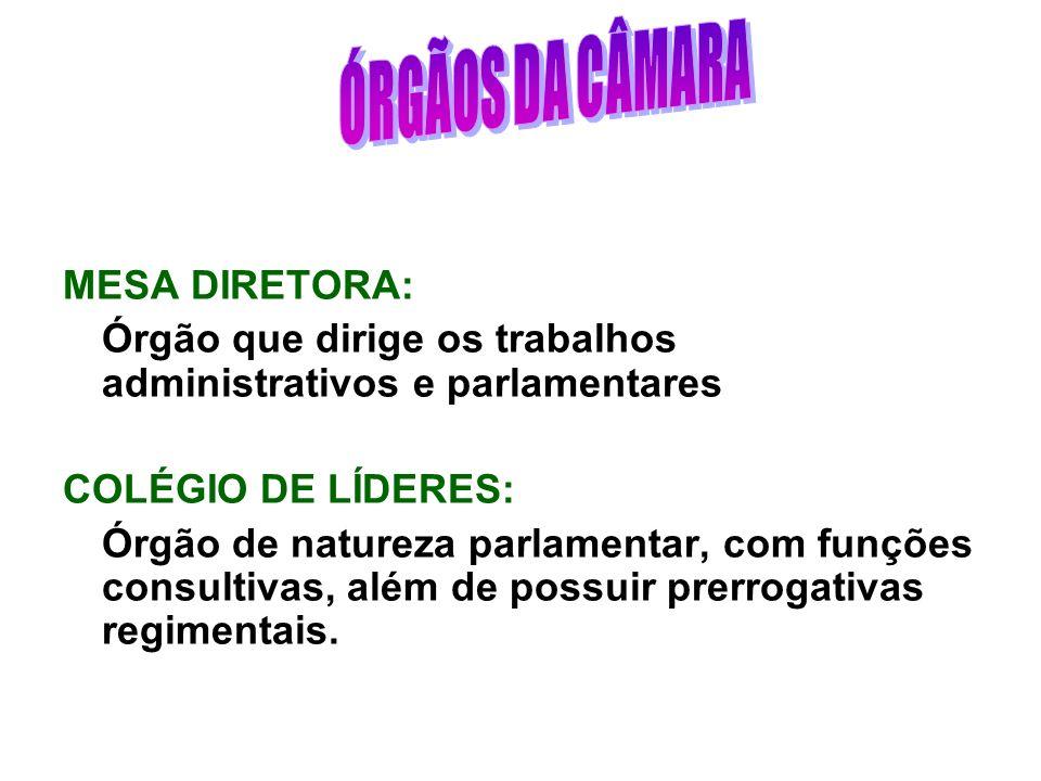 ÓRGÃOS DA CÂMARA MESA DIRETORA: