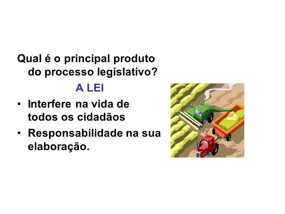 Qual é o principal produto do processo legislativo