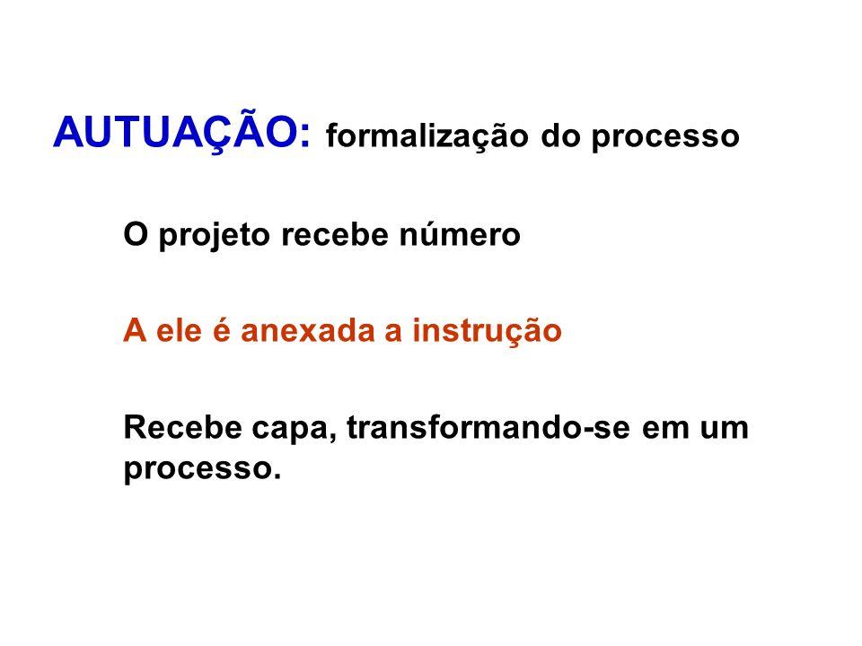 AUTUAÇÃO: formalização do processo
