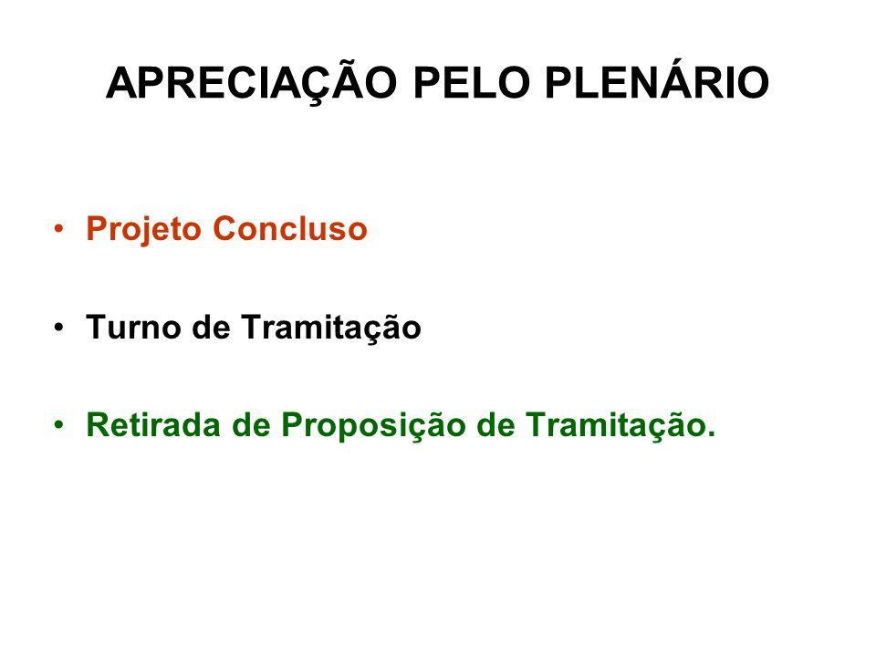 APRECIAÇÃO PELO PLENÁRIO