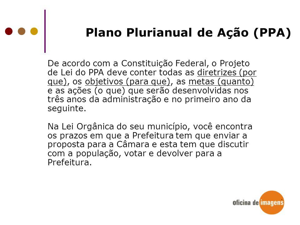 Plano Plurianual de Ação (PPA)