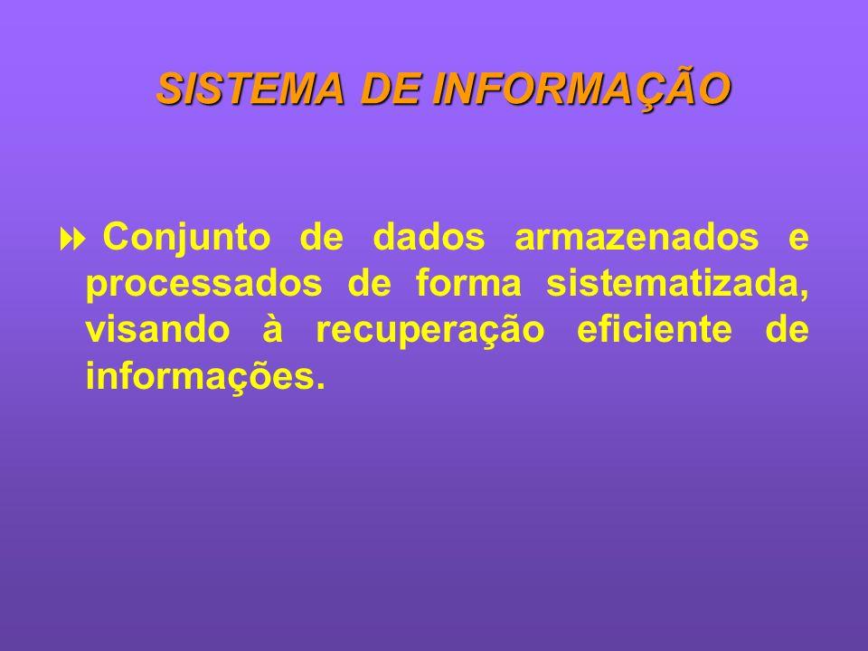 SISTEMA DE INFORMAÇÃO Conjunto de dados armazenados e processados de forma sistematizada, visando à recuperação eficiente de informações.