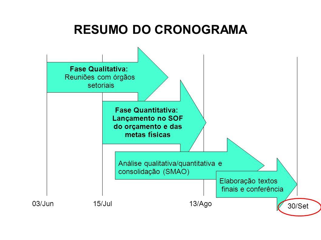 RESUMO DO CRONOGRAMA Fase Qualitativa: Reuniões com órgãos setoriais