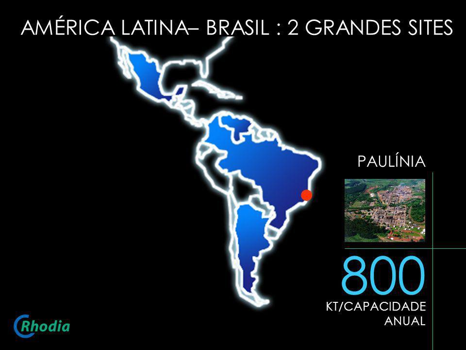 800 AMÉRICA LATINA– BRASIL : 2 GRANDES SITES PAULÍNIA