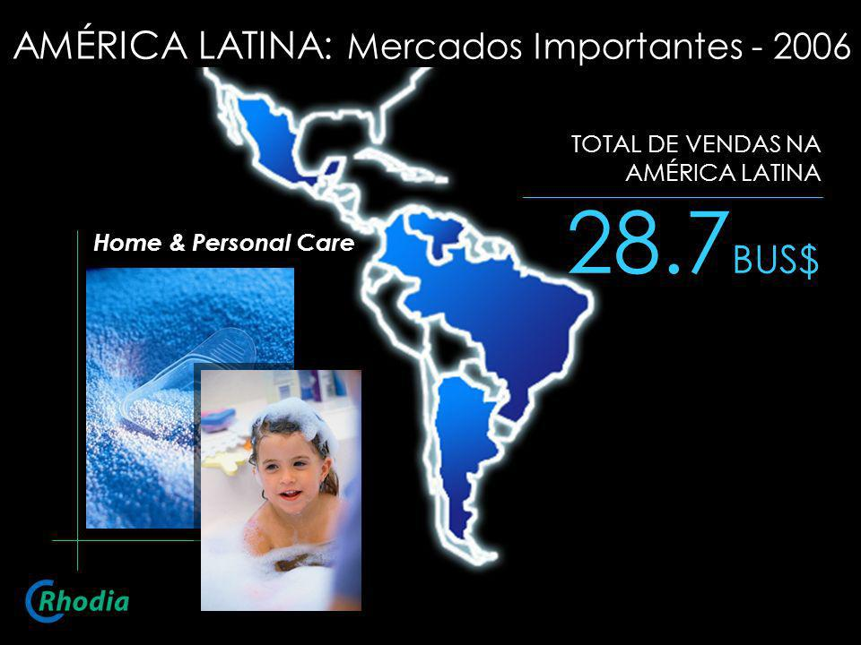 28.7BUS$ AMÉRICA LATINA: Mercados Importantes - 2006