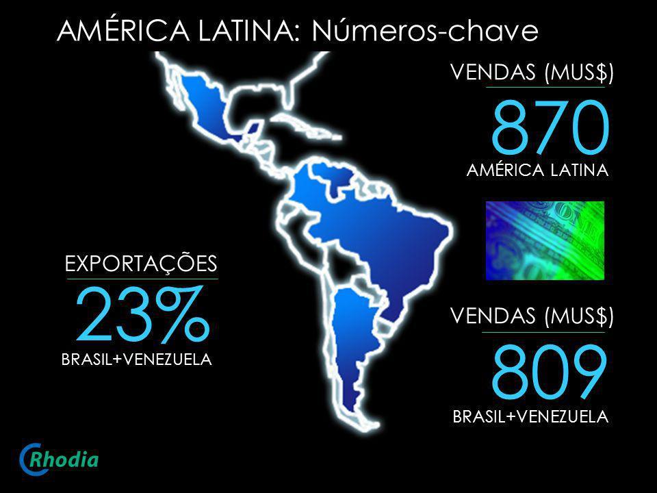 870 23% 809 AMÉRICA LATINA: Números-chave VENDAS (MUS$) EXPORTAÇÕES